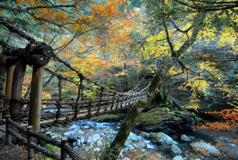 Shikoku Iya Valley